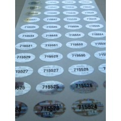 Oval Tamper Evident Security Labels